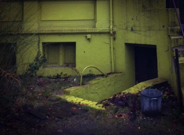 "Lost Place Hamburg: Die ""grüne Villa"" in Altona, Foto: Sebastian Hartmann"